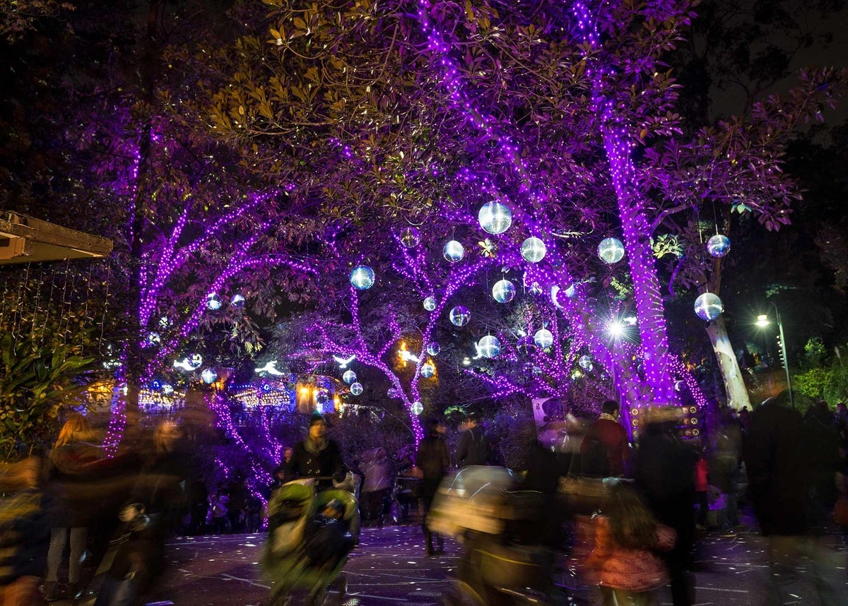 The Best Holiday Lights in Los Angeles | Discover Los Angeles Mobile